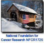 NFCR1725 Covered Bridge holiday card