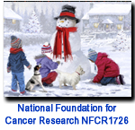 NFCR1726 Playtime holiday card