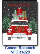 NFCR1828 Loaded With Gifts Charity holiday card
