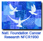 NFCR1930 Doves in Flight Charity Holiday Card